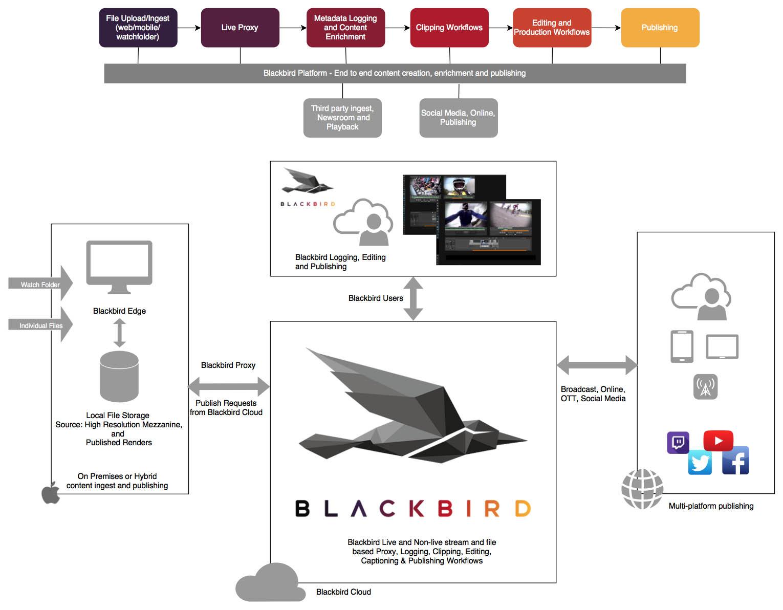 Remote News Production – Blackbird